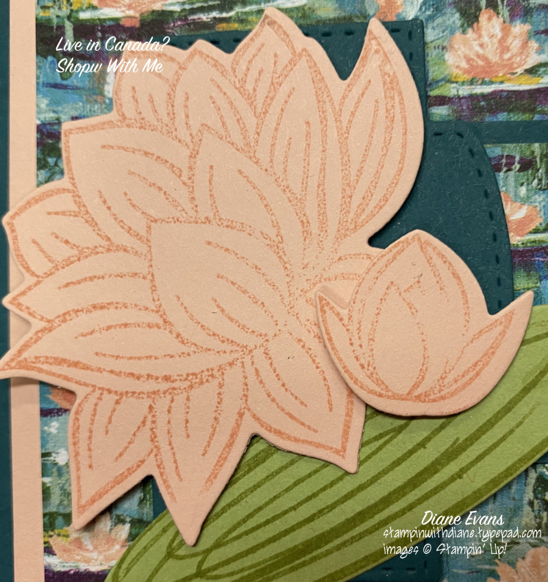 Diane Evans Lovely Lily Pad Stampin' Up!2