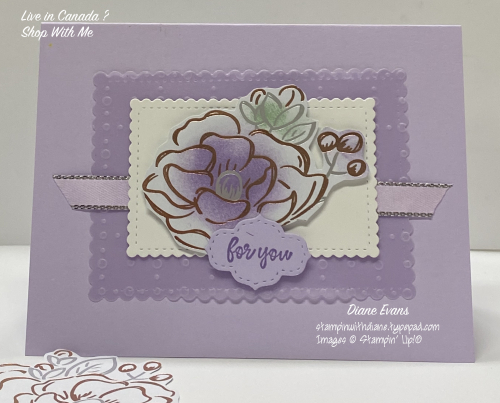 Diane Evans Stampin Up Saleabration