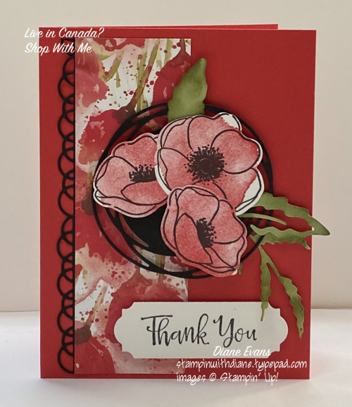 Diane Evans painted Poppies Stampin' Up!®