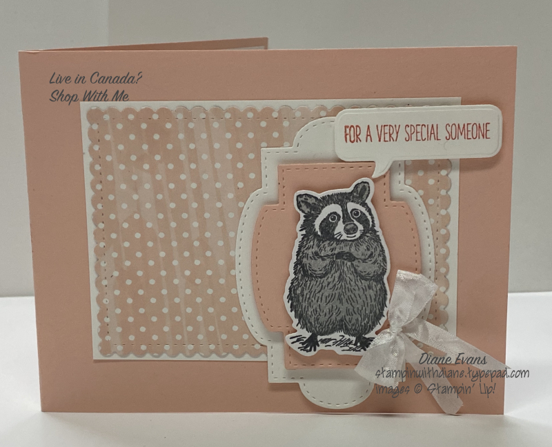 Diane Evans Special Someone Stampin' Up!