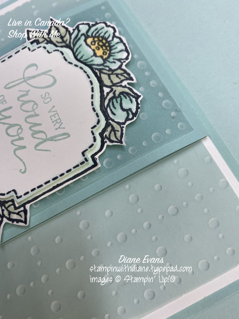 Diane Evans Closeup Tags in Bl