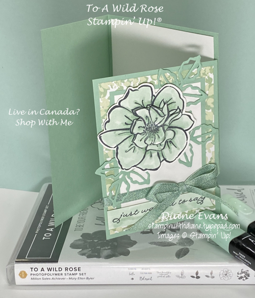 Stampin With Diane Evans To A Wild Rose Stampin up!2