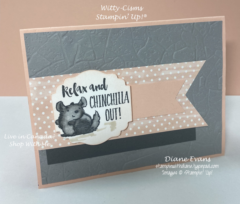 Stampin With Diane Witty-Cisms Stmpin Up!
