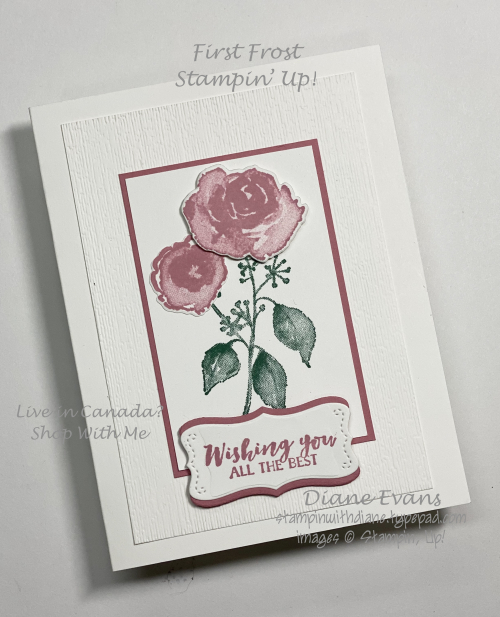 Stampin With Diane Firt Frost 1