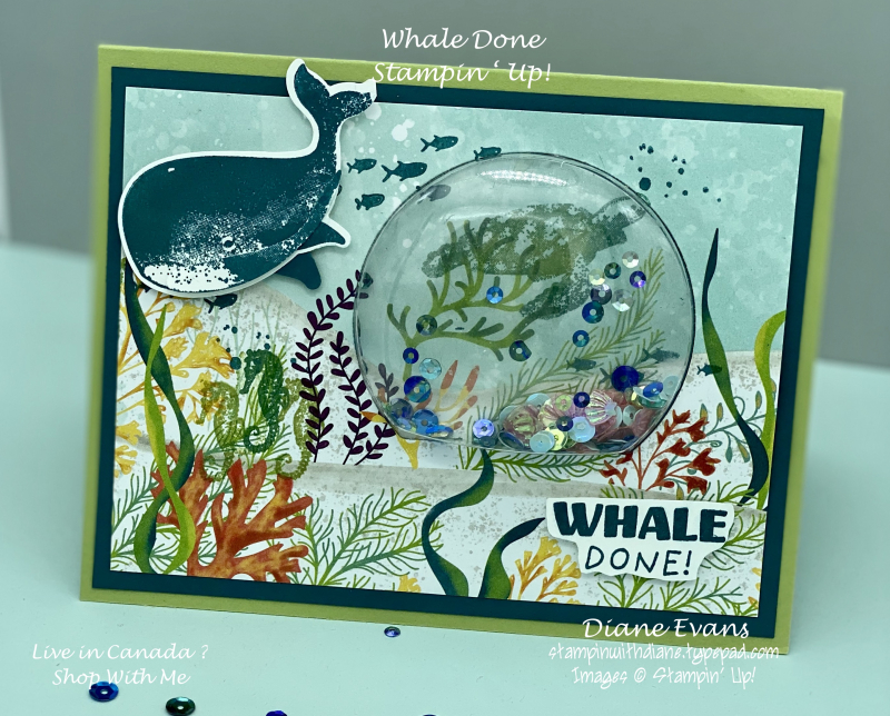 Stampin With Diane Evans Whale Done Su