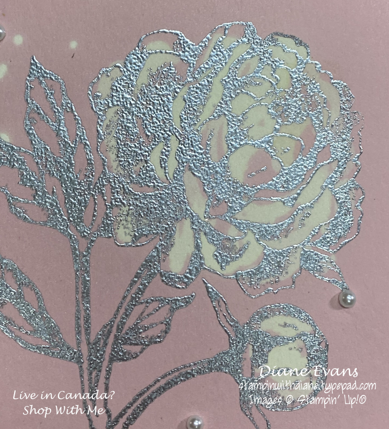 Stampin With Diane Evans Bleached Close up