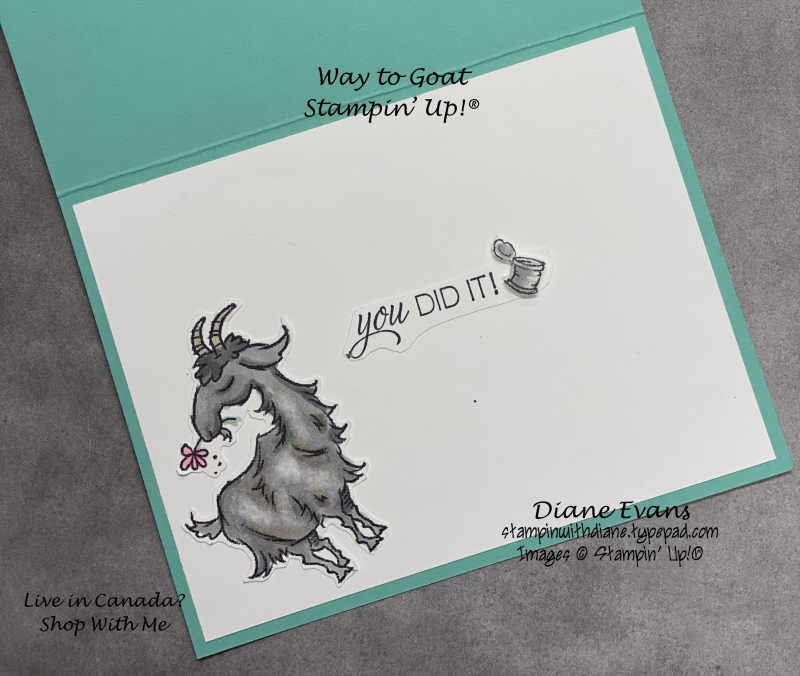 Stampin With Diane Evans Way to Goat SU2