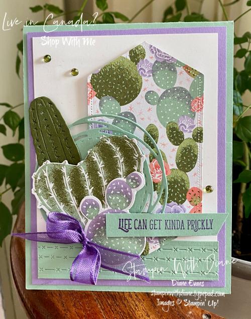 Flowering Cactus Stampin' Up! Stampin by Diane Evans