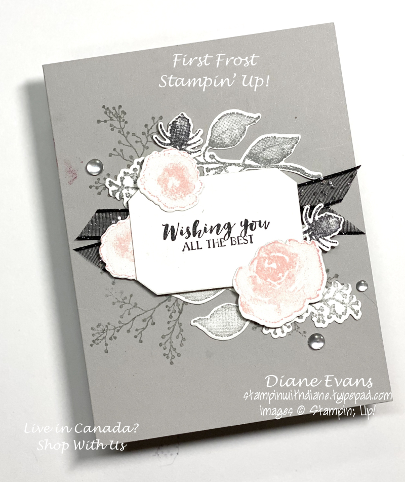 Stampin With Diane First Frost