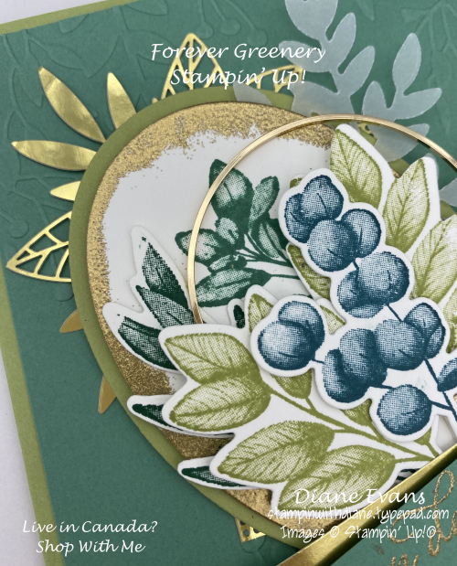 Stampin With Diane Forever Greenery SU