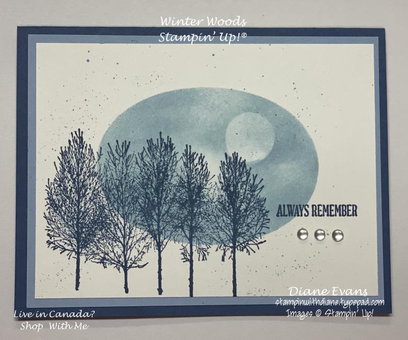 Stampin With Diane Evans Winter woods SU