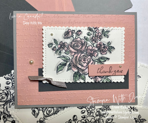 Fancy Phrases SU 4 Stampin With Diane Evans