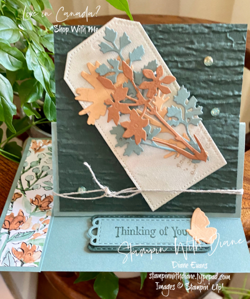 Quiet Meadow Stampin Up ! Stampin With Diane Evans