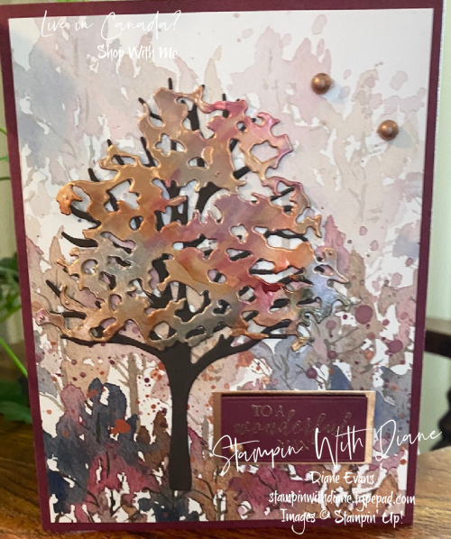Beauty of Friendship Stampin Up Stampin With Diane Evans
