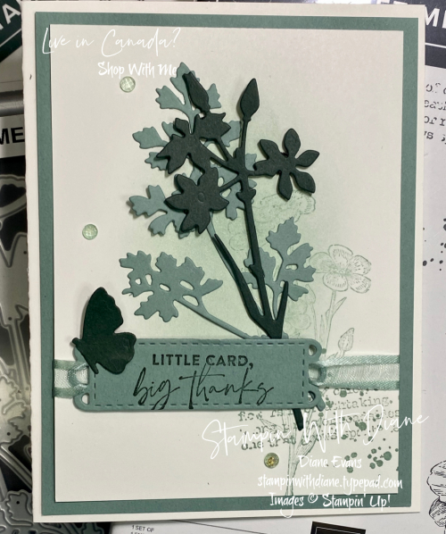 Quiet Meadow Stampin' Up Stampin With Diane Evans