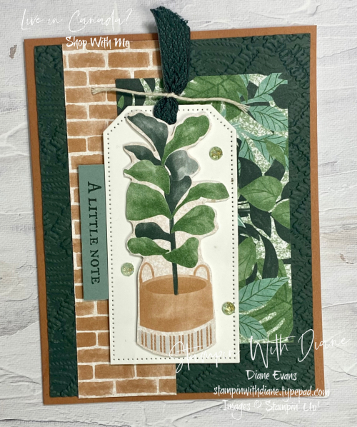 Plentiful Plants Stampin Up Stampin With Diane Evans CS