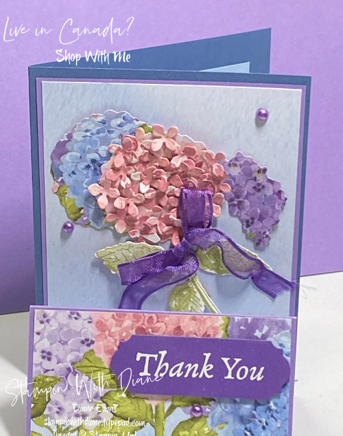 Hydrangea Hil Stampin Up Stamping with Diane Evans3