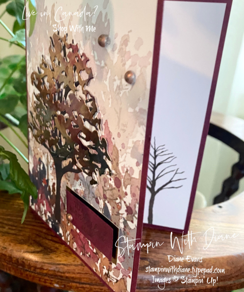Beauty of Friendship Stampin' Up Stampin With Diane Evans
