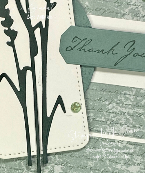 Harvest Meadow DSp STampin Up Stampin With Diane Evans